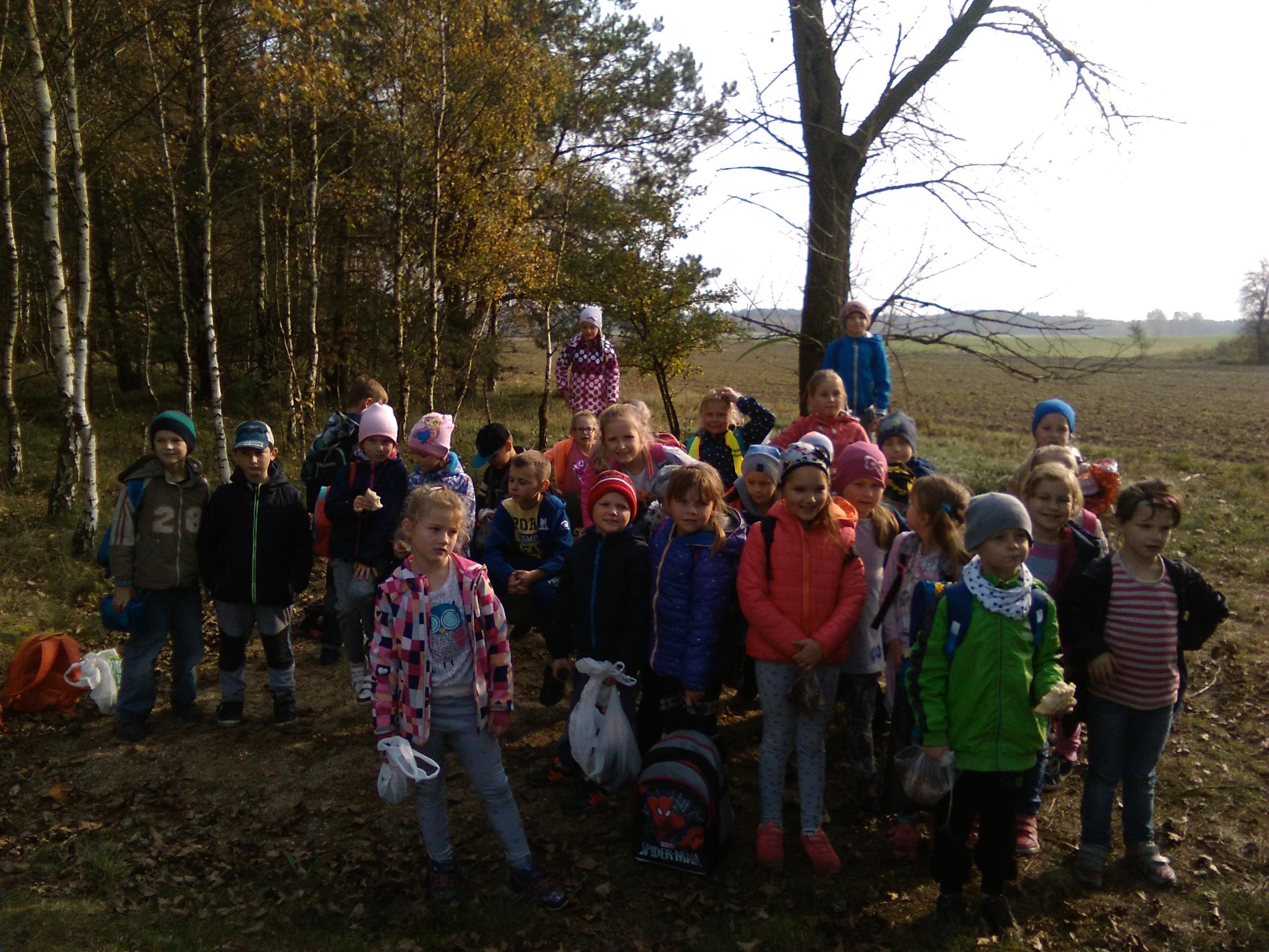 Wycieczka do lasu klas I-III SP…