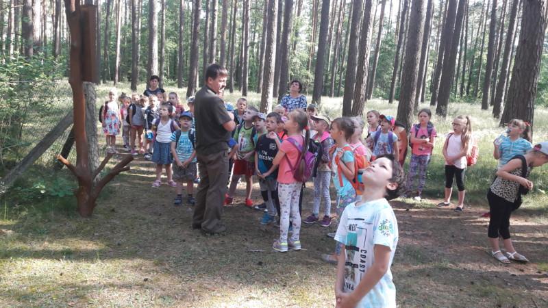Wycieczka do lasu klas 0-III…