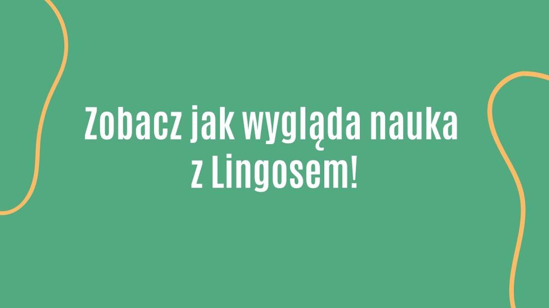 Lingos Dla Szkół